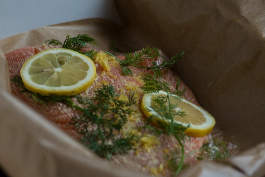 Salmon - ingredients