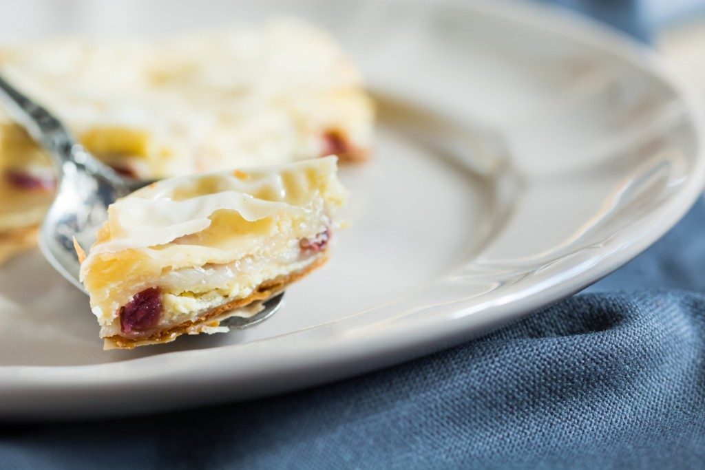 Yogurt & Cranberry Pie