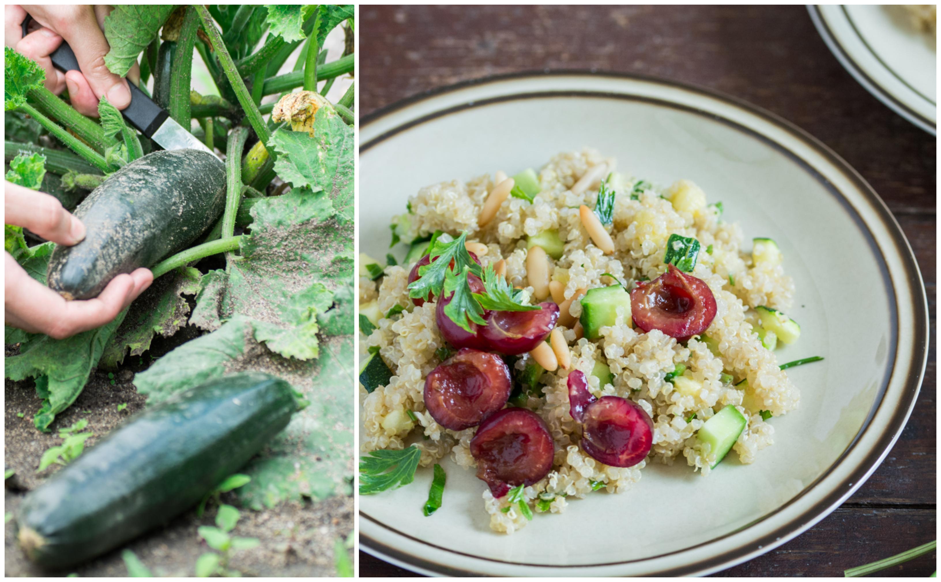 Salată de quinoa cu vișine (vegan / de post)